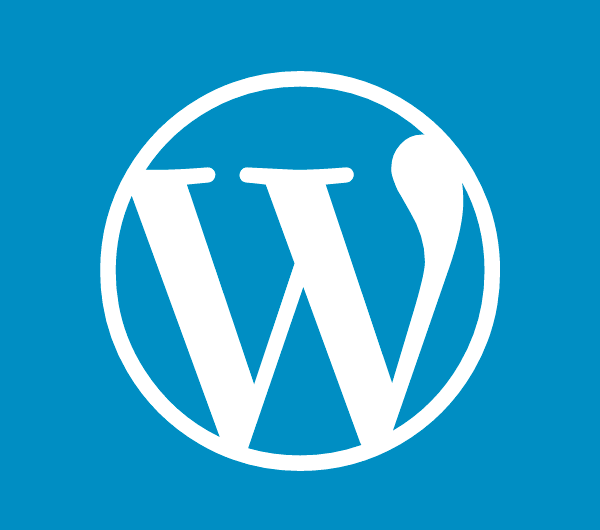 WordPress cursus
